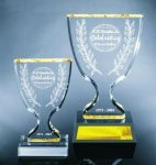 Trophy Cup Achievement Award Trophies
