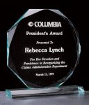 Octagon Series 3/4 Thick Acrylic Award Achievement Award Trophies