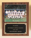 Plaque with Slide-in Photo or Certificate Holder Football Trophy Awards