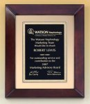 Cherry Finish Wood Frame Plaque Sales Awards