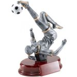 Soccer, F. Resin, Soccer Trophy Awards